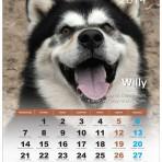 PROMOCJA ! Kalendarz Chłopaki nie płaczą 2014